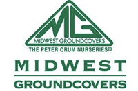 Midwest Groundcovers