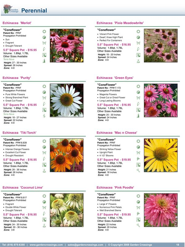 This page style has 8 plants per page, each with an image and icons for the primary characteristics.