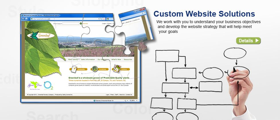 Custom Website Solutions