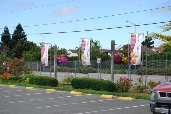Gorgeous roadside banners draw attention to Regan Nursery in Fremont, CA and promote braod product categories.